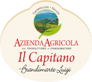 azienda agricola il capitano brandimarte luigi vendita online lenticchie di castelluccio di norcia